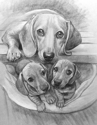 Dachshund Mom & Pups